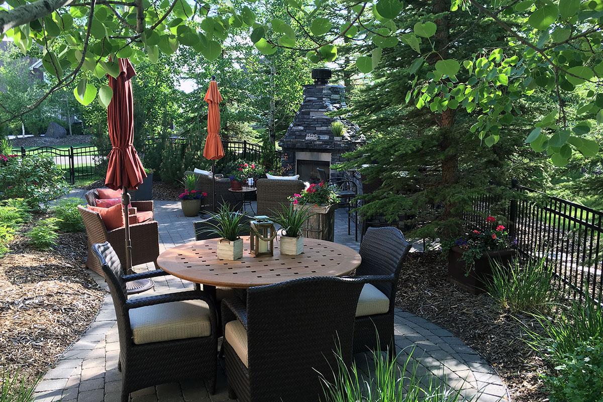 Backyard Landscape