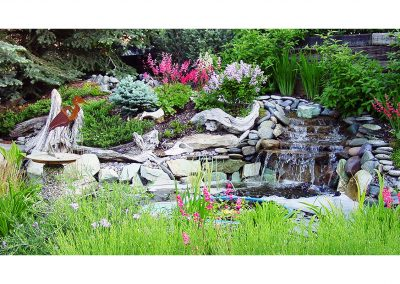water-feature-koi-pond-1-year-later