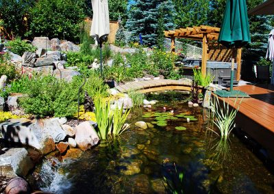 water feature landscaped in Calgary