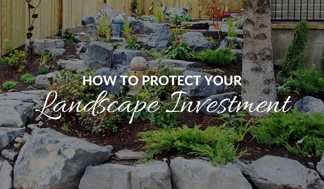 How to Protect Your Landscape Investments